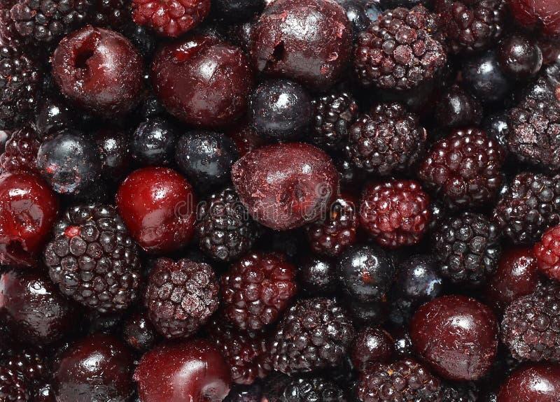 Παγωμένα σκοτεινά φρούτα στοκ εικόνα με δικαίωμα ελεύθερης χρήσης