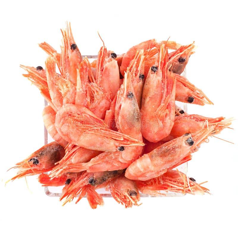 παγωμένες γαρίδες στοκ εικόνες
