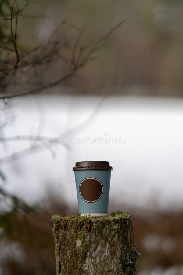 παγωμένη βλάστηση το χειμώνα στο υπόβαθρο θαμπάδων με το φλυτζάνι καφέ στοκ εικόνες