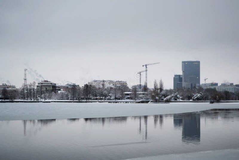 Παγωμένη λίμνη Herastrau στοκ φωτογραφίες