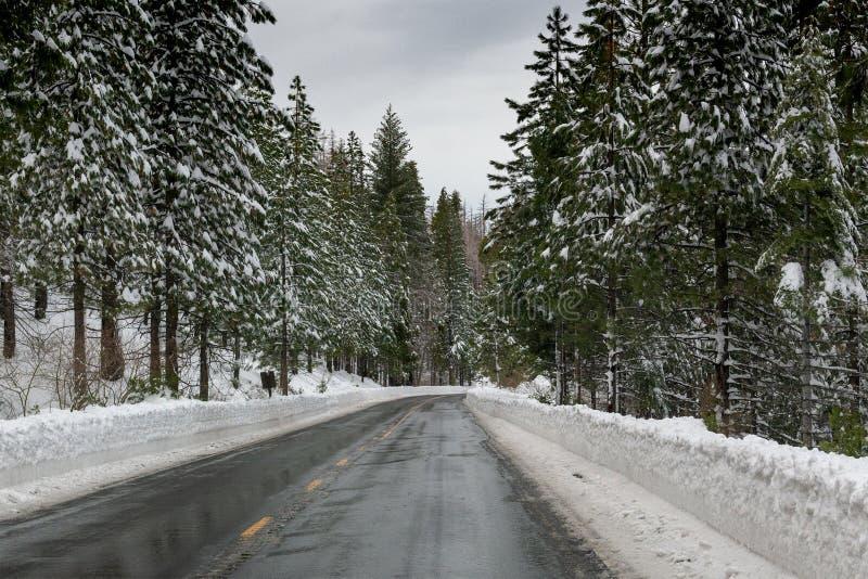 Παγωμένη οδική εθνική οδός 88 προς το πέρασμα του Carson στοκ εικόνες με δικαίωμα ελεύθερης χρήσης