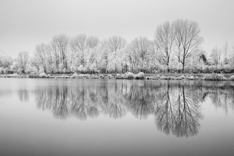 Παγωμένη φύση από τον ποταμό Elbe-Celakovice, τσεχικό ύφασμα στοκ εικόνα