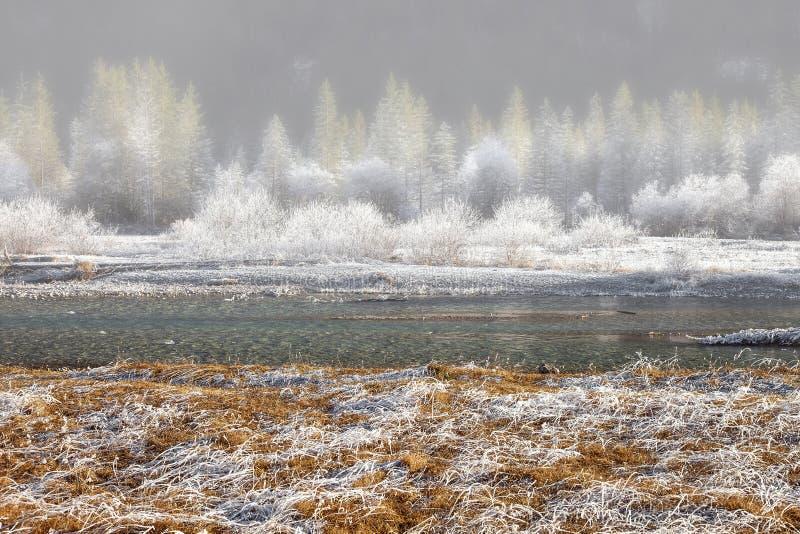 Παγωμένη φύση κοντά σε garmisch-Partenkirchen, Γερμανία στοκ φωτογραφία