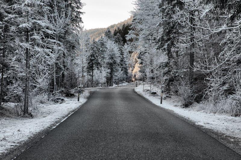 Παγωμένη φύση κοντά σε garmisch-Partenkirchen, Γερμανία στοκ εικόνες με δικαίωμα ελεύθερης χρήσης