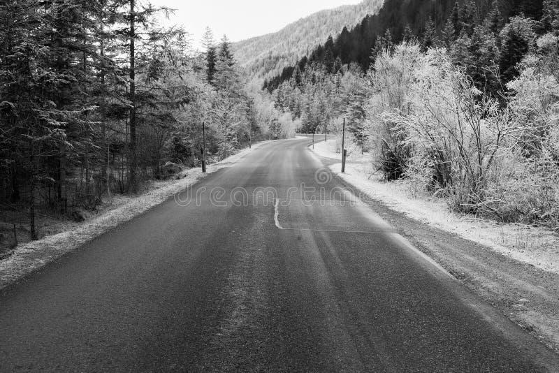 Παγωμένη φύση κοντά σε garmisch-Partenkirchen, Γερμανία στοκ φωτογραφία με δικαίωμα ελεύθερης χρήσης