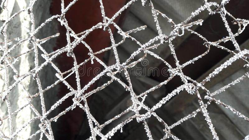 Παγωμένοι, παγωμένοι Ιστοί αραχνών στο φράκτη καλωδίων Σκοτεινή ανασκόπηση στοκ εικόνες