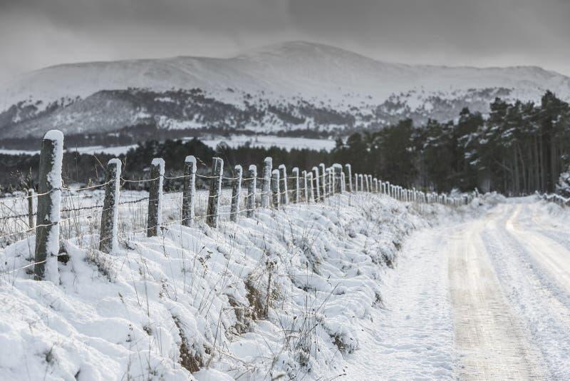 Παγωμένος δρόμος στο εθνικό πάρκο Cairngorms της Σκωτίας στοκ φωτογραφία με δικαίωμα ελεύθερης χρήσης