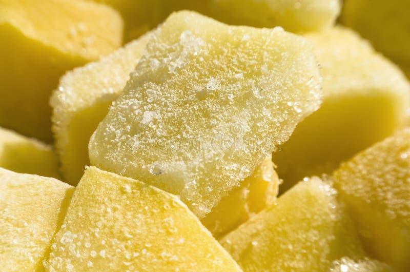 παγωμένο ανασκόπηση βλασταημένο ανανάς χιόνι στοκ εικόνες με δικαίωμα ελεύθερης χρήσης