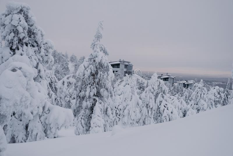Παγωμένο δάσος που καλύπτεται από το χιόνι στοκ φωτογραφία με δικαίωμα ελεύθερης χρήσης