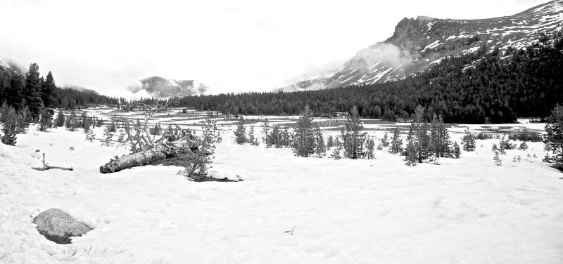 Παγωμένο εθνικό πάρκο Yosemite λιμνών στοκ φωτογραφίες