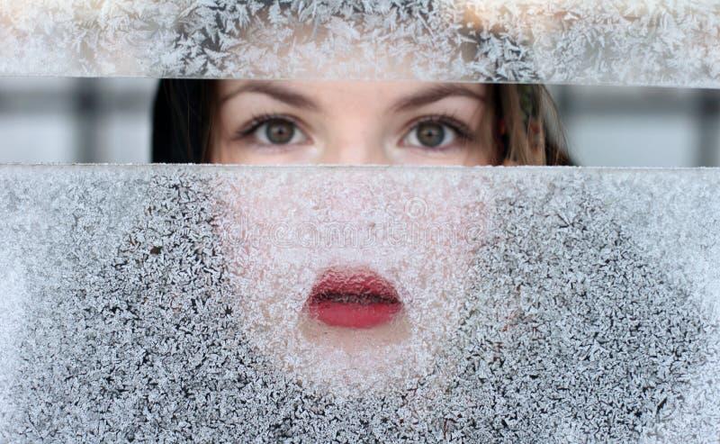 παγωμένο παράθυρο πορτρέτ&omi στοκ εικόνα