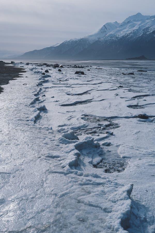 Παγωμένο παλιρροιακό σχέδιο στην παραλία της Αλάσκας στοκ εικόνα με δικαίωμα ελεύθερης χρήσης