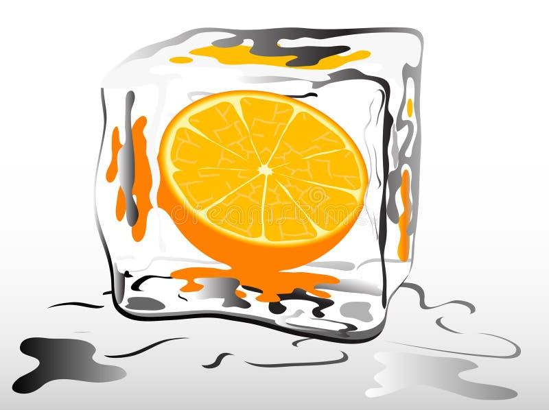 παγωμένο πορτοκάλι Στοκ Εικόνες