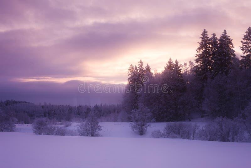 Παγωμένο χειμερινό πρωί στοκ φωτογραφία με δικαίωμα ελεύθερης χρήσης