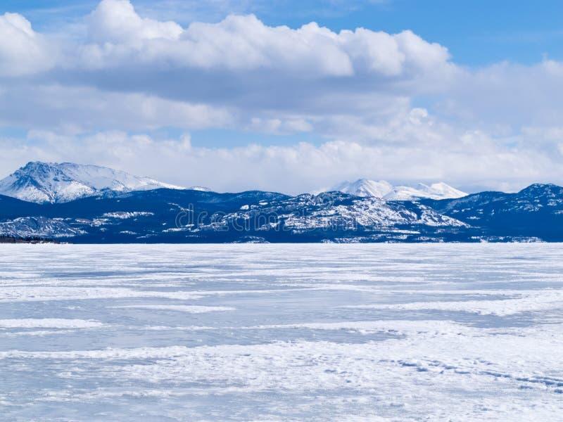 Παγωμένο χειμερινό τοπίο Yukon Καναδάς Laberge λιμνών στοκ φωτογραφία με δικαίωμα ελεύθερης χρήσης