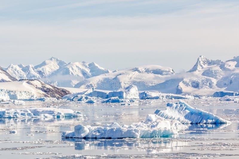 Παγόβουνα στα ακόμα νερά του κόλπου Neco με τα χιονώδη βουνά και του παγετώνα στο υπόβαθρο στοκ εικόνες