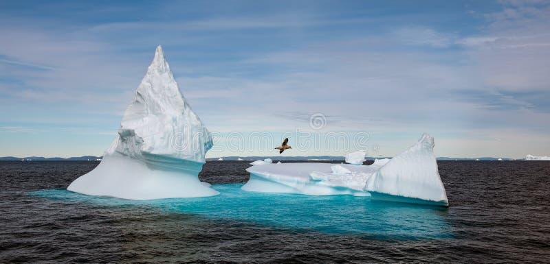 Παγόβουνο από την ακτή της Γροιλανδίας στοκ εικόνα