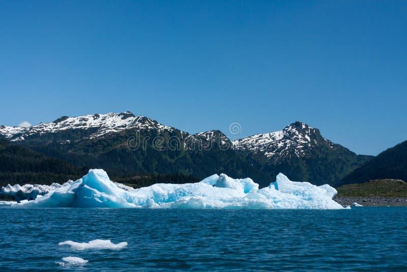παγόβουνο της Αλάσκας στοκ εικόνες