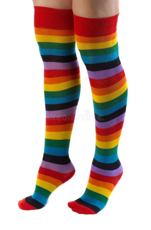 Παγώνοντας τα πόδια στις ζωηρόχρωμες γυναικείες κάλτσες που απομονώνονται στην άσπρη ανασκόπηση στοκ φωτογραφία