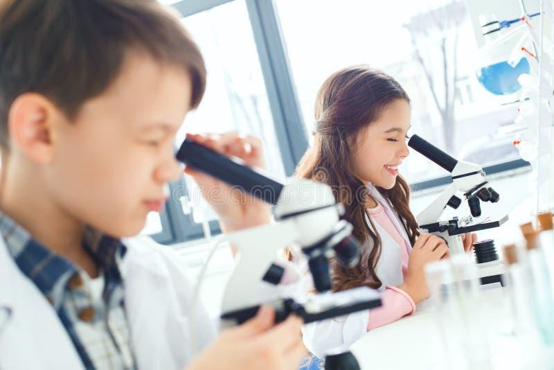 Παιδάκια που μαθαίνουν τη χημεία στο σχολικό εργαστήριο που κοιτάζει στα μικροσκόπια στοκ φωτογραφίες