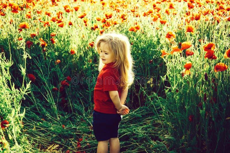 Παιδί ή χαμογελώντας μικρό παιδί με τη μακριά ξανθή τρίχα στο κόκκινο πουκάμισο στον τομέα λουλουδιών της παπαρούνας με τον πράσι στοκ φωτογραφίες