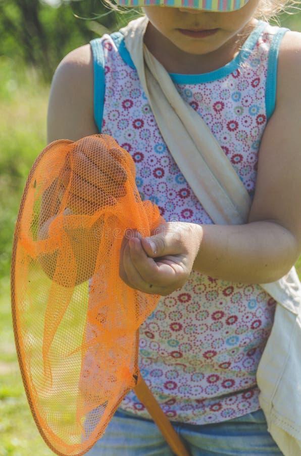 Παιδί με καθαρές συλλήψεις μια πεταλούδα στοκ φωτογραφίες με δικαίωμα ελεύθερης χρήσης