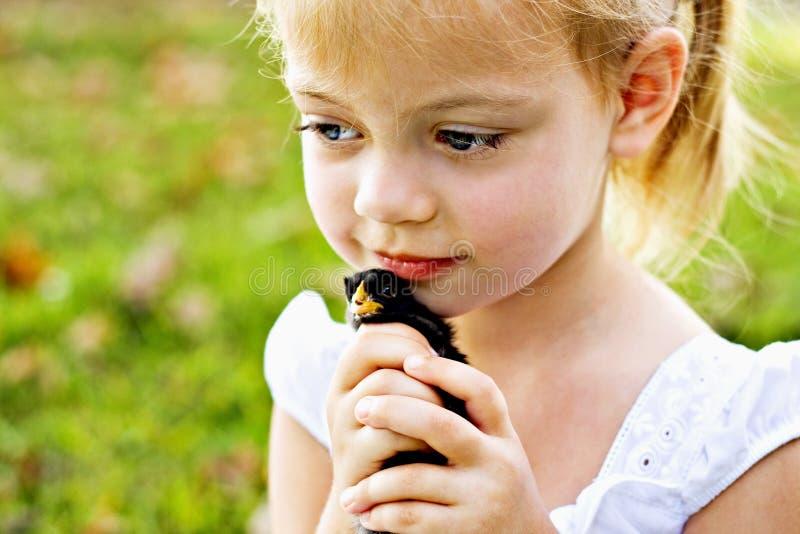 παιδί νεοσσών που κρατά λί&gam στοκ εικόνες με δικαίωμα ελεύθερης χρήσης