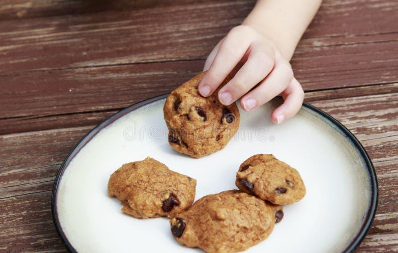 Παιδί που κλέβει ένα μπισκότο τσιπ σοκολάτας κολοκύθας από ένα πιάτο στοκ εικόνες