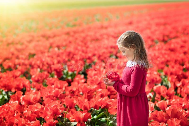 Παιδί στον κόκκινο τομέα λουλουδιών Κήπος παπαρουνών και τουλιπών στοκ φωτογραφίες