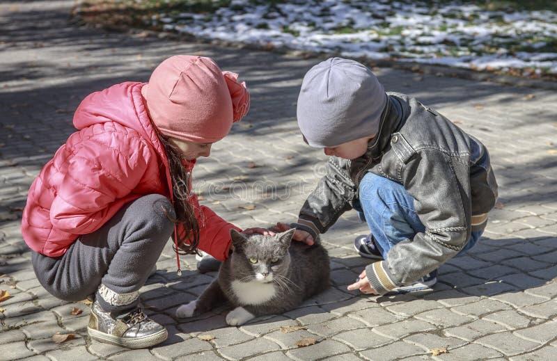 Παιδιά και μια γάτα στοκ φωτογραφία με δικαίωμα ελεύθερης χρήσης