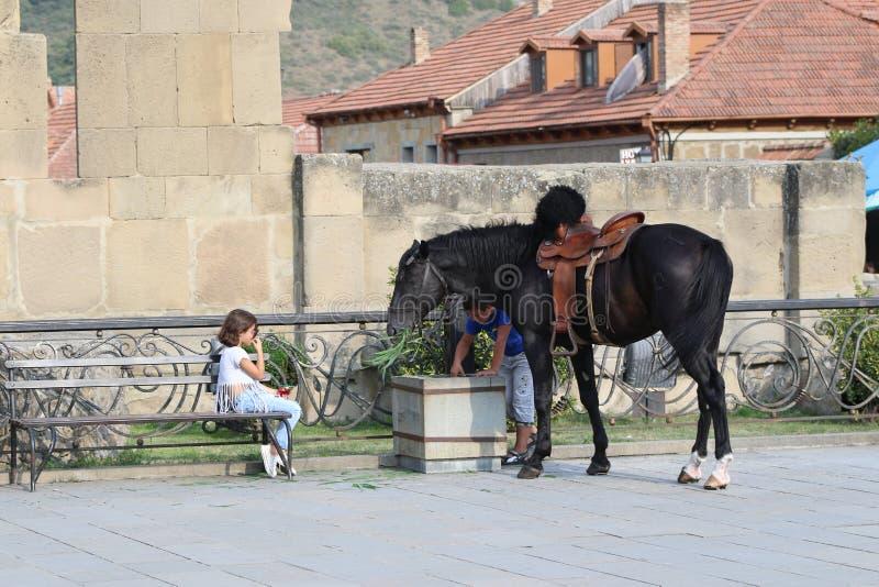 Παιδιά κοντά στο μαύρο άλογο στον τοίχο πετρών στοκ εικόνες