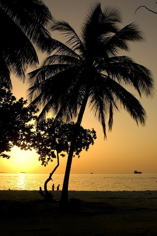 παιδιά που παίζουν sunsets στοκ φωτογραφίες