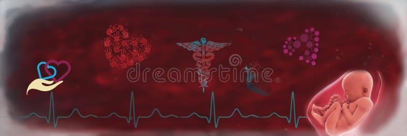 Παιδιατρική καρδιολογία διανυσματική απεικόνιση