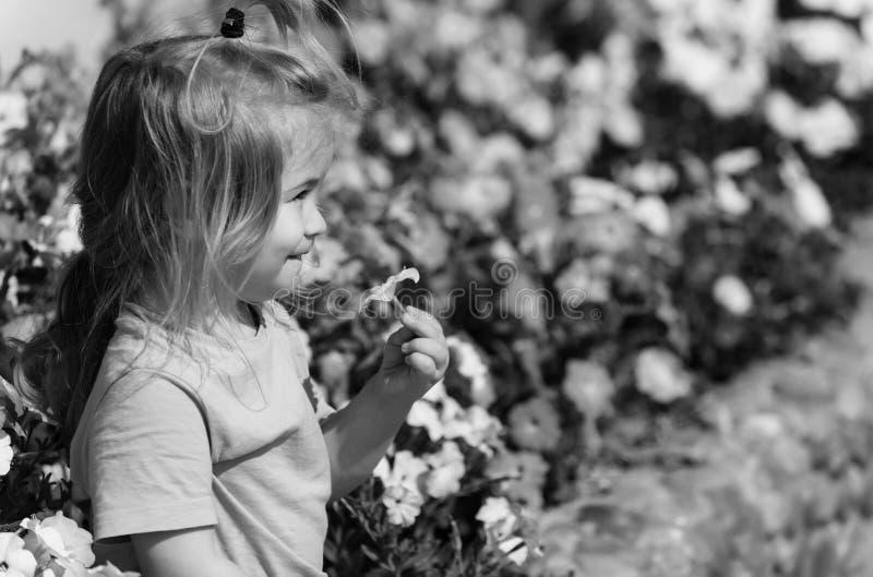 Παιδική ηλικία, ευτυχία Το χαριτωμένο ευτυχές παιχνίδι αγοράκι με τα ανθίζοντας λουλούδια στοκ εικόνα