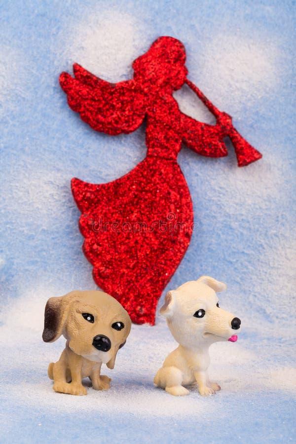 Παιχνίδι δύο λίγο σκυλί σε ένα μπλε θολωμένο υπόβαθρο στοκ φωτογραφία με δικαίωμα ελεύθερης χρήσης