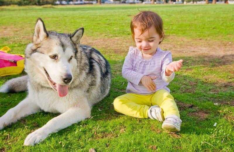 Παιχνίδι μωρών ρολογιών σκυλιών φρουράς στοκ φωτογραφίες