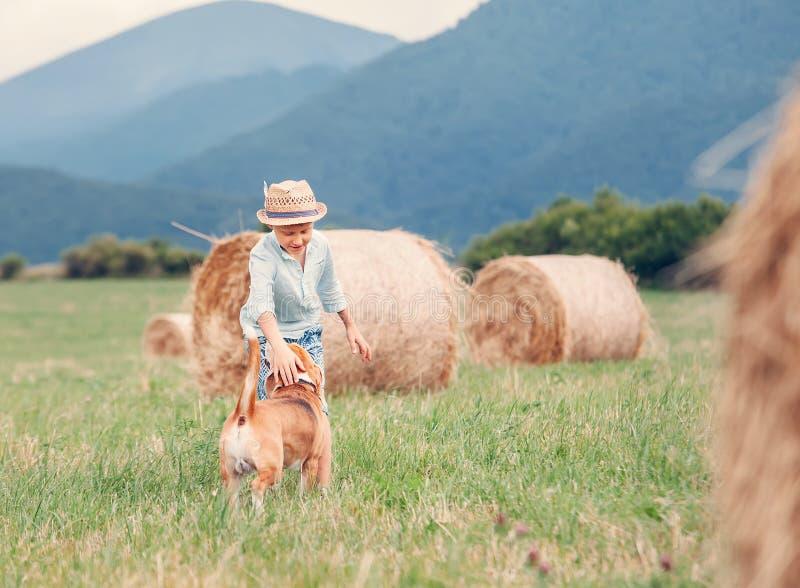 Παιχνίδια αγοριών με το σκυλί στον τομέα με το hayroll στοκ φωτογραφίες με δικαίωμα ελεύθερης χρήσης