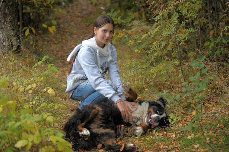 Παιχνίδι κοριτσιών με ένα σκυλί βουνών Bernese στοκ φωτογραφία
