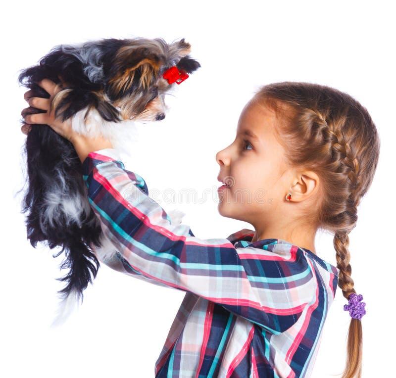 Παιχνίδι κοριτσιών με το τεριέ του Γιορκσάιρ της στοκ εικόνα με δικαίωμα ελεύθερης χρήσης