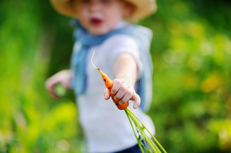Παιχνίδι μικρών παιδιών στον εσωτερικό κήπο στη θερινή ημέρα στοκ εικόνες