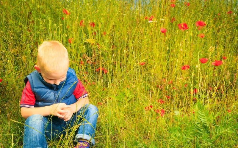 Παιχνίδι παιδιών στο λιβάδι που εξετάζει τα λουλούδια τομέων στοκ εικόνες