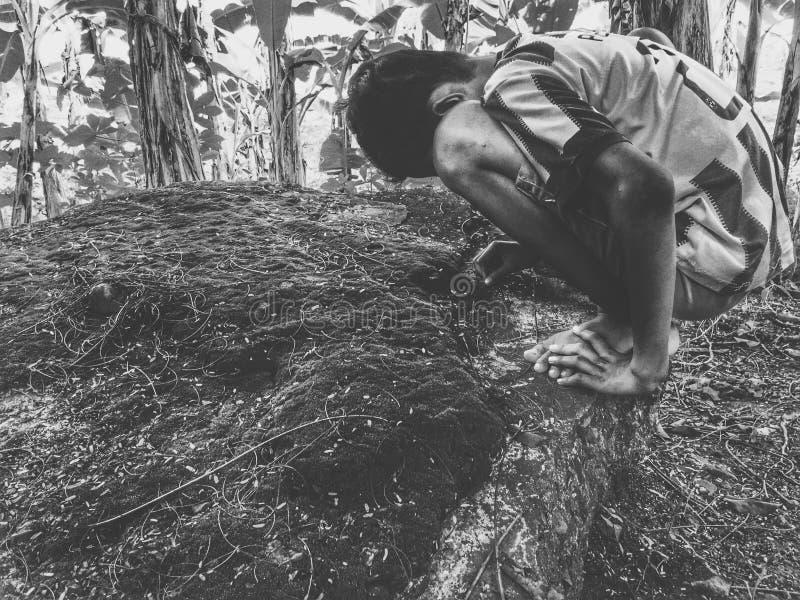 Παιχνίδι στο αγρόκτημα στοκ φωτογραφία με δικαίωμα ελεύθερης χρήσης