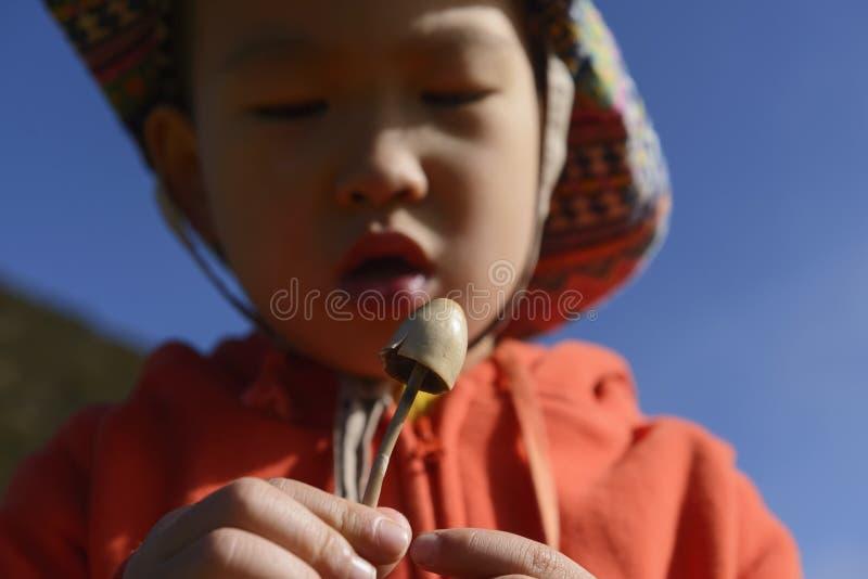 παιδί που παρατηρεί το μανιτάρι στοκ φωτογραφία με δικαίωμα ελεύθερης χρήσης