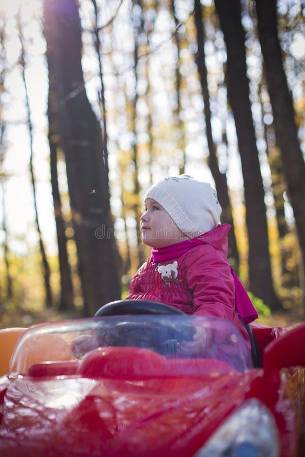 Παιδί στα ξύλα στοκ φωτογραφία