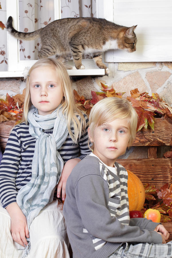 Παιδιά - αγόρι, κορίτσι και γάτα στοκ φωτογραφία
