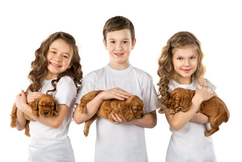 Παιδιά με τα puppys που απομονώνονται στο άσπρο υπόβαθρο Φιλία της Pet παιδιών στοκ εικόνες