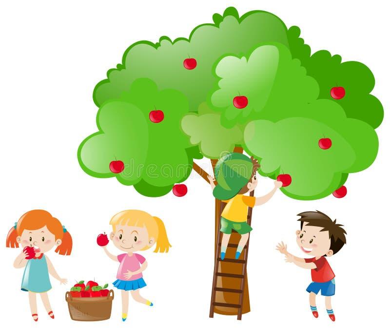 Παιδιά που επιλέγουν τα μήλα από το δέντρο διανυσματική απεικόνιση