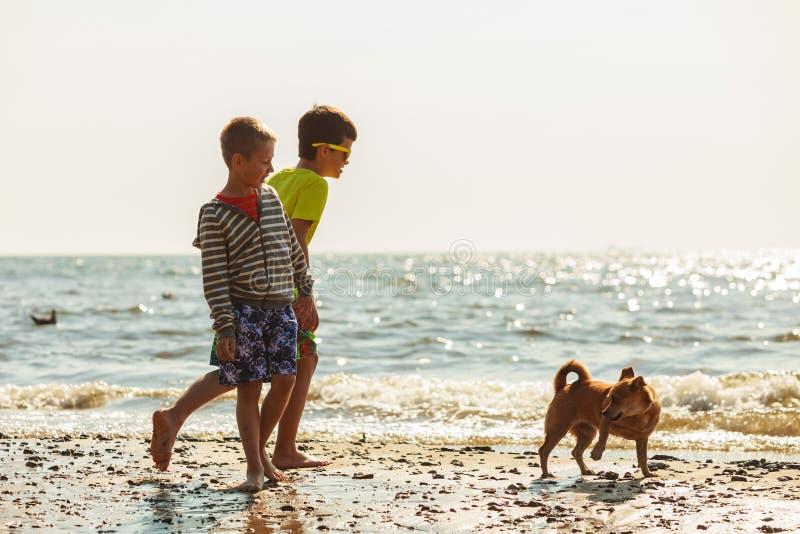 Παιδιά που παίζουν με το σκυλί του στοκ εικόνες με δικαίωμα ελεύθερης χρήσης
