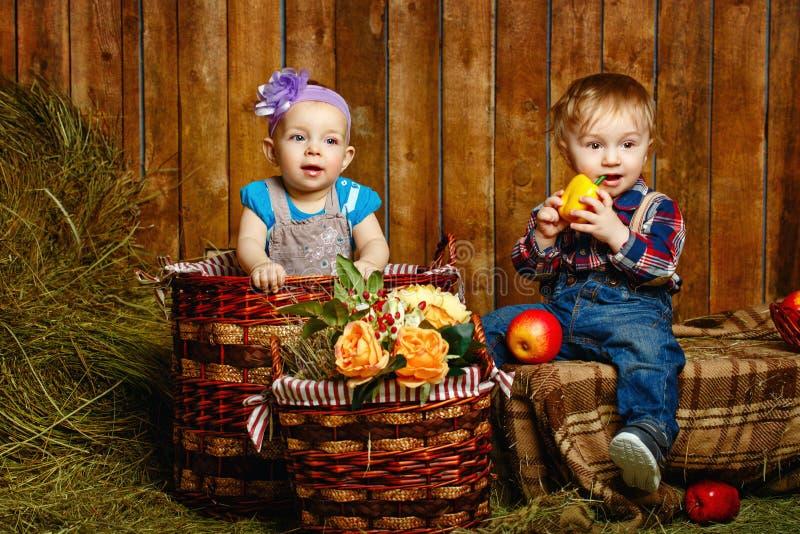 Παιδιά που παίζουν στο αγρόκτημα στοκ φωτογραφία με δικαίωμα ελεύθερης χρήσης