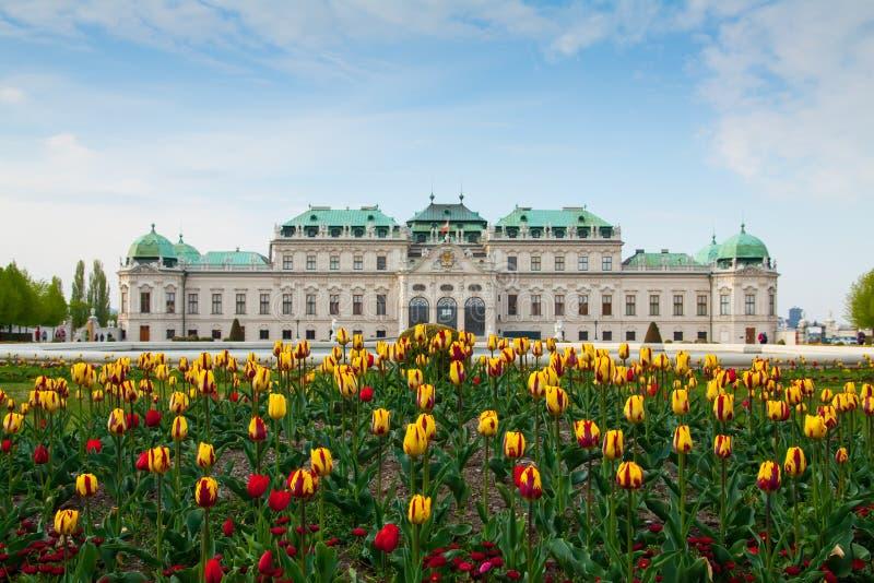 παλάτι Βιέννη πανοραμικών πυργίσκων της Αυστρίας στοκ εικόνα με δικαίωμα ελεύθερης χρήσης